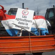 Manifestacja rolników w Luksemburgu 22.06.2009