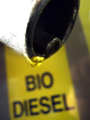 Posiedzenie Komisji Rolnictwa i Rozwoju Wsi w dniu 28 maja 2014 na temat biopaliw