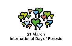 Kluczowa rola lasów w zrównoważonym rozwiązywaniu nowych wyzwań społecznych