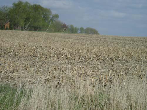 O kontroli działek rolnych metodą inspekcji terenowej oraz kontroli metodą FOTO