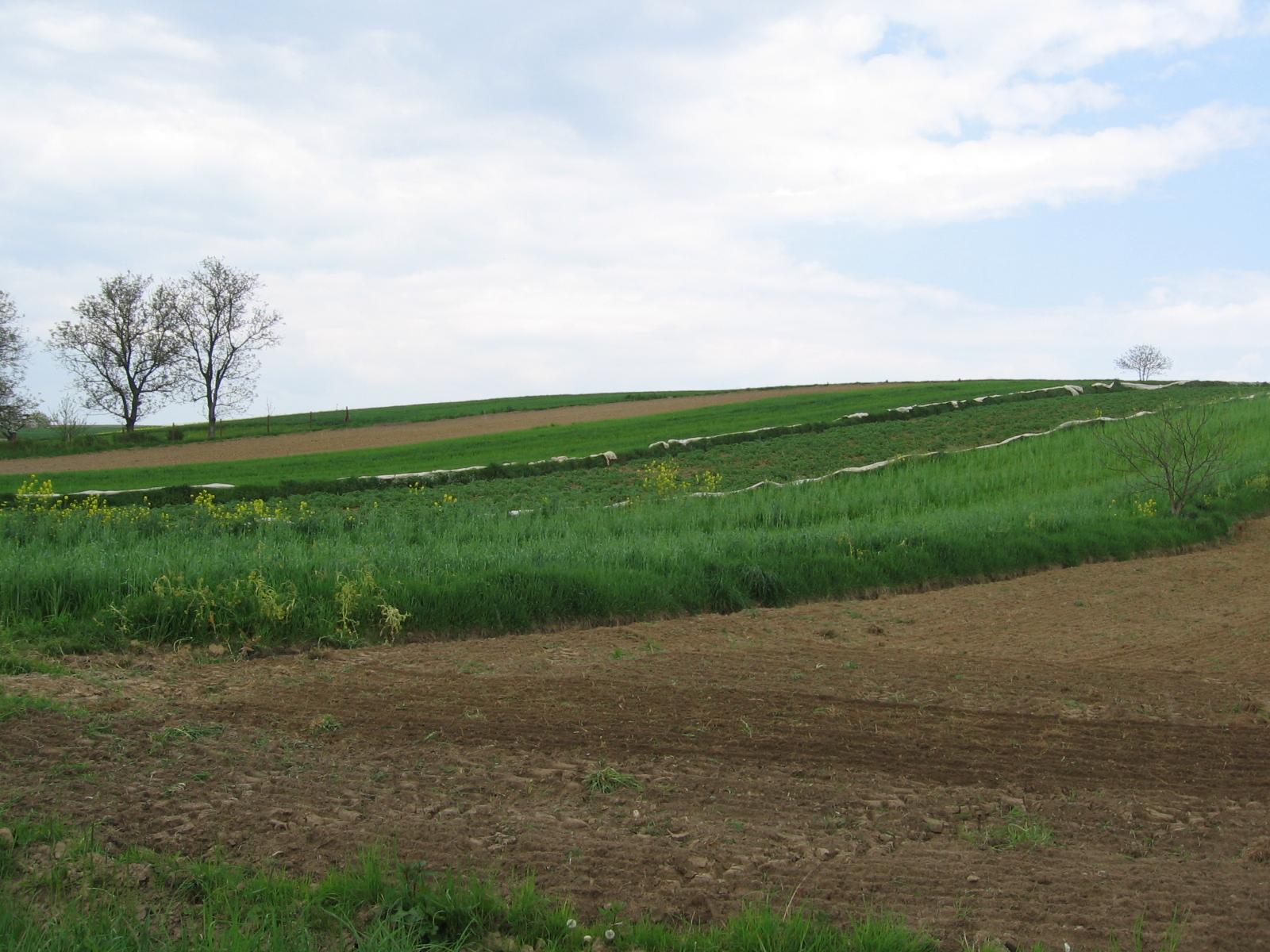 Apel Zarządu KRIR ws. odrzucenia poprawek Senatu do ustawy o kształtowaniu ustroju rolnego