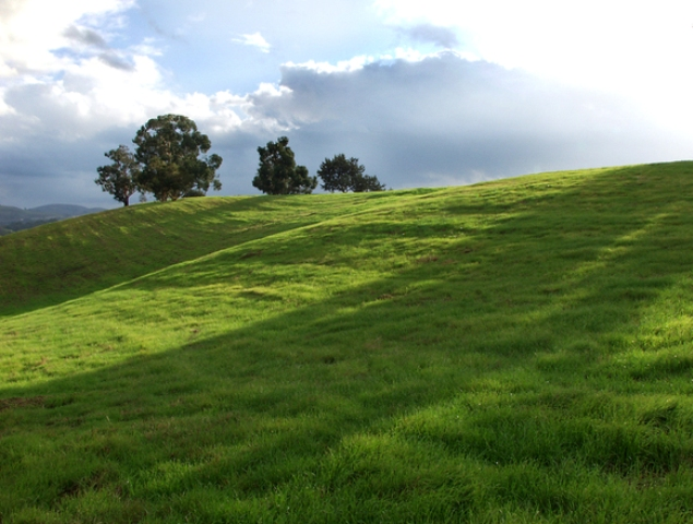 Nabywanie nieruchomości rolnych przez kościoły i związki wyznaniowe