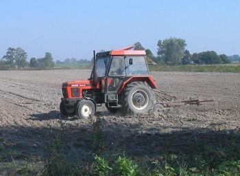 W obronie bezumownych użytkowników działek rolnych o małej powierzchni