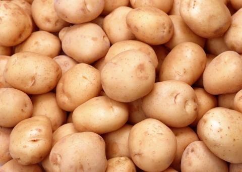 Sprzedaż ziemniaków do państw Unii Europejskiej